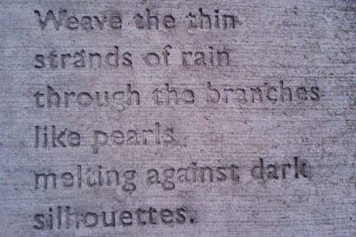 Sidewalk Observations: Weave the thin strands of rain through the branches like pearls melting against dark silhouettes.