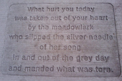 Sidewalk Observations: What hurt you today was taken out of your heart by the meadow lark who slipped the silver needle of her song in and out of the grey day and mended what was torn.