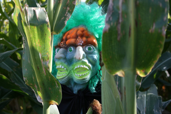 The Mask in the Corn Field