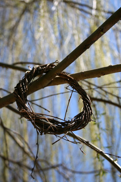 Ring of Twigs